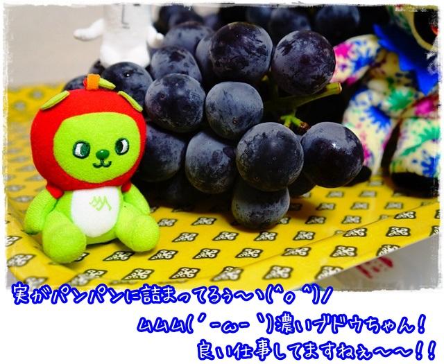 濃いブドウは美味しい証拠