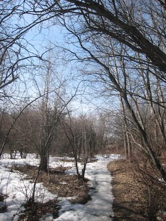 ワグナー自然保護区