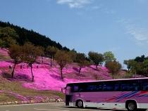 滝上観光バス