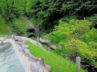 景色 露天風呂 鹿の谷