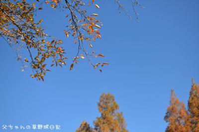 DSC_4285.jpg