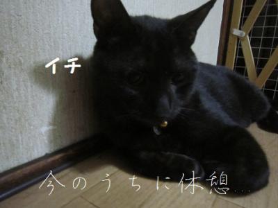 IMG_5657.jpg