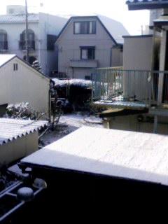 雪自宅裏 130208_0816~001