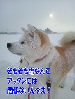 2_20130207181927.png