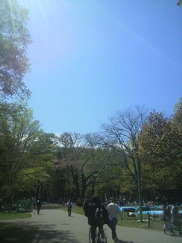 2012円山公園