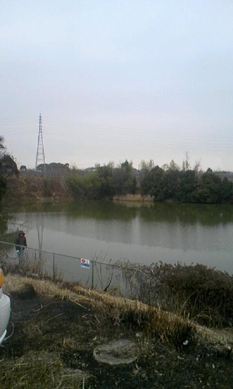 20100203173246