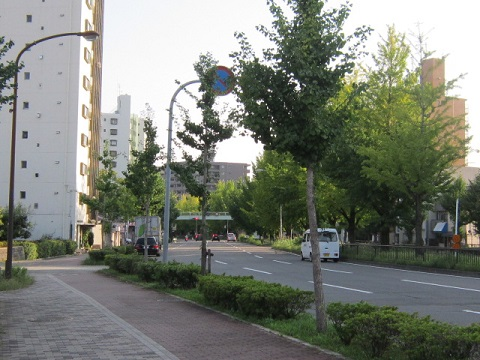 248-7.jpg