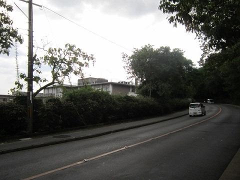 257-9.jpg