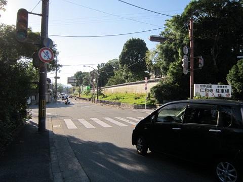 259-31.jpg