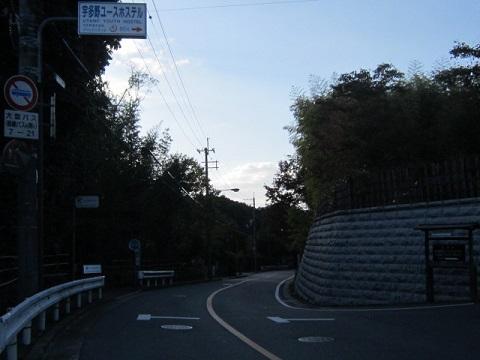 263-12.jpg