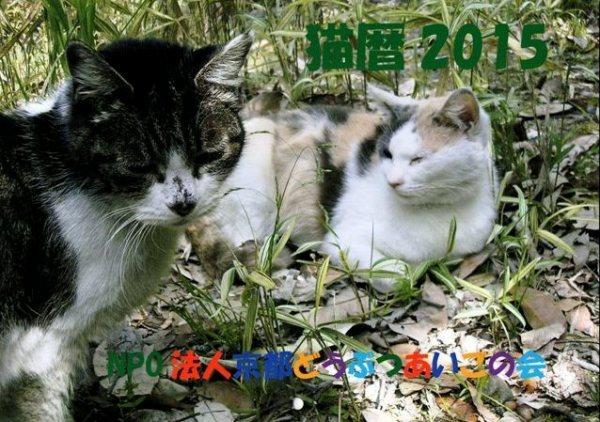 猫暦2015カレンダー (1)