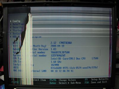 DSCN5008
