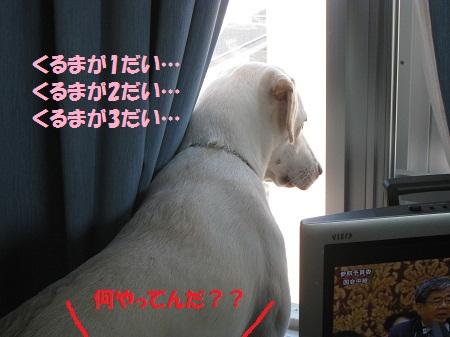 012編集