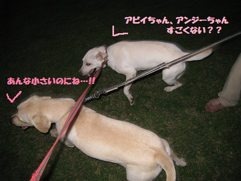 013編集