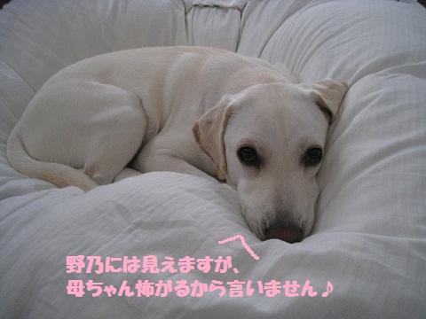 001編集