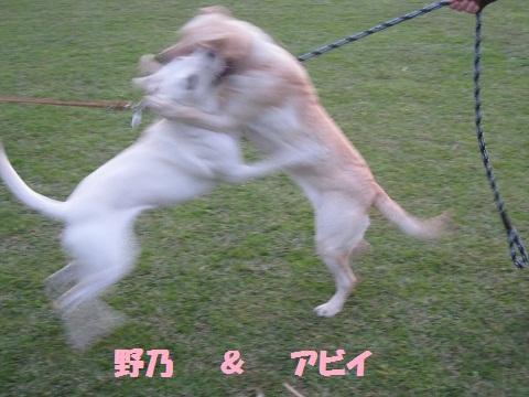 036編集