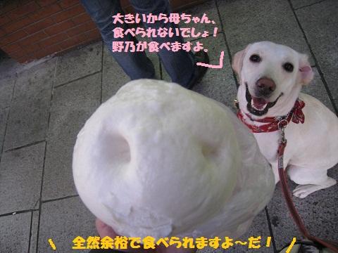 016編集