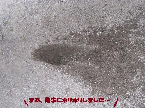 009編集