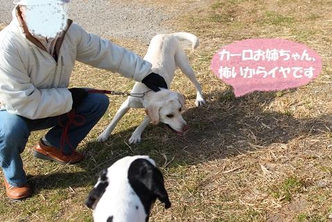 IMG_0591編集