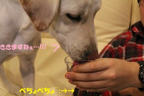 IMG_0514編集
