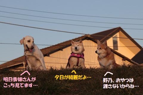 201201011-8編集