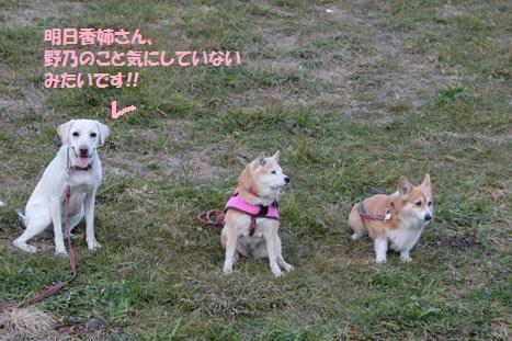 201201011-10編集