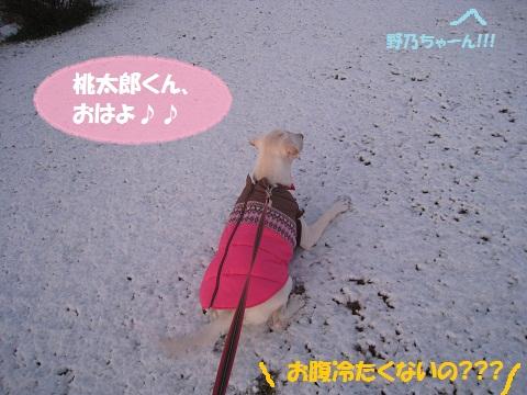 006編集