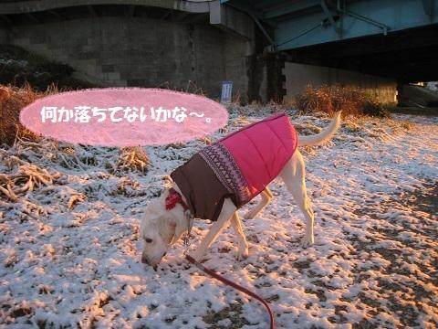 026編集編集