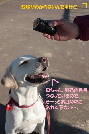 201202003-9編集