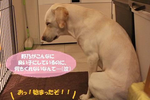 IMG_2268編集