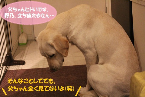 IMG_2270編集