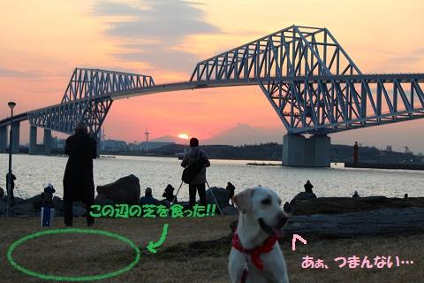 IMG_2395編集