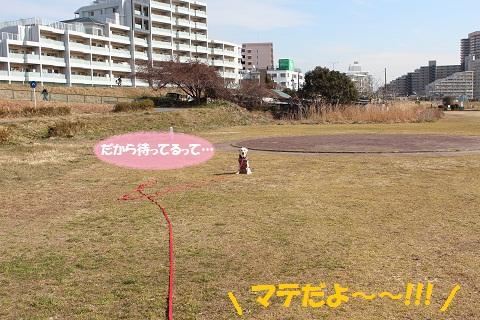IMG_2471編集