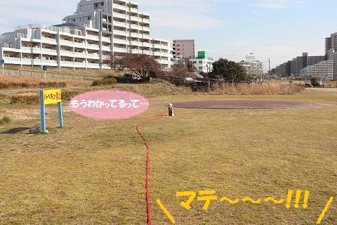 IMG_2472編集