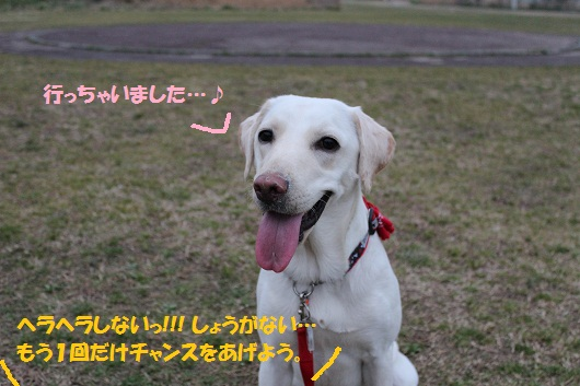 IMG_3250編