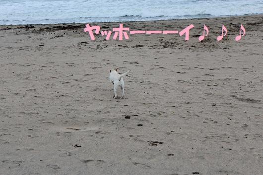 IMG_3319編
