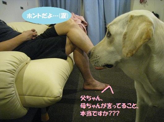 020編集