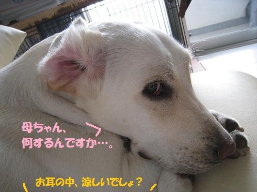 008編集