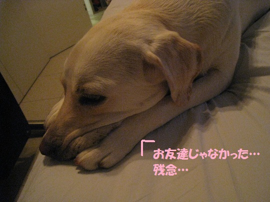 010編集