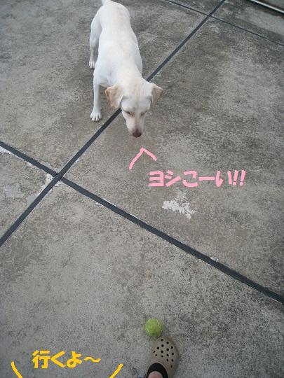 026編集