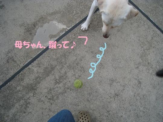030編集