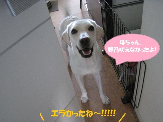 003編集