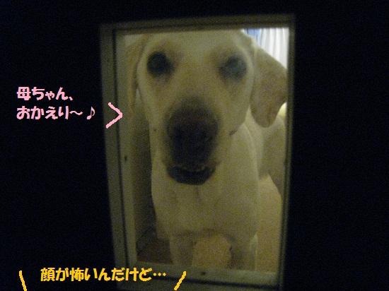 004編集