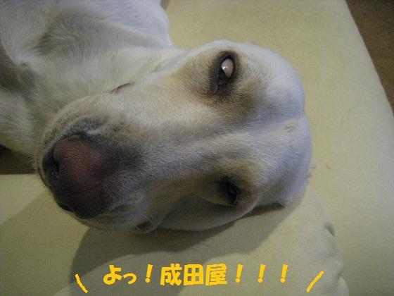 018編集