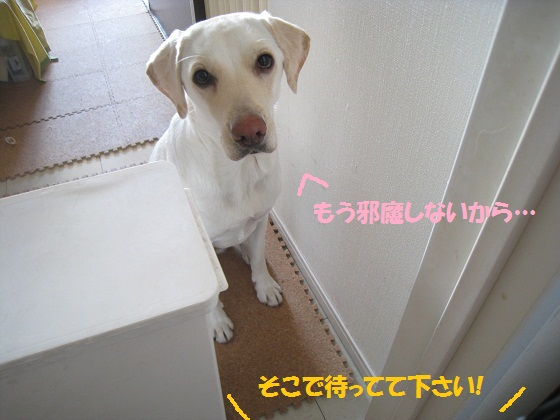 033編集