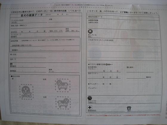 IMG_6077-1.jpg