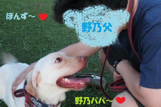 IMG_7940-1.jpg