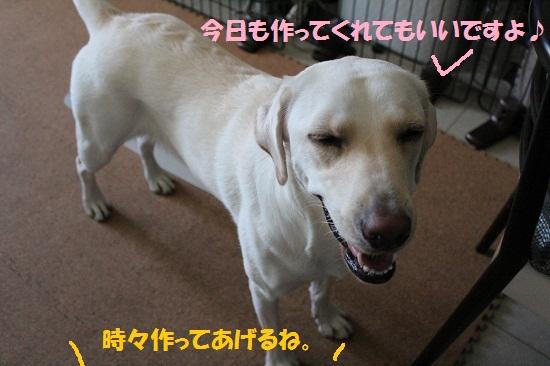 IMG_8441-1.jpg