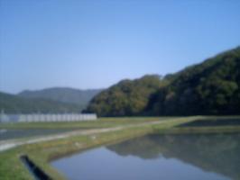 HI350266.jpg