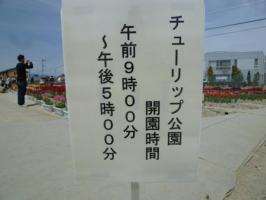 P1030422.jpg